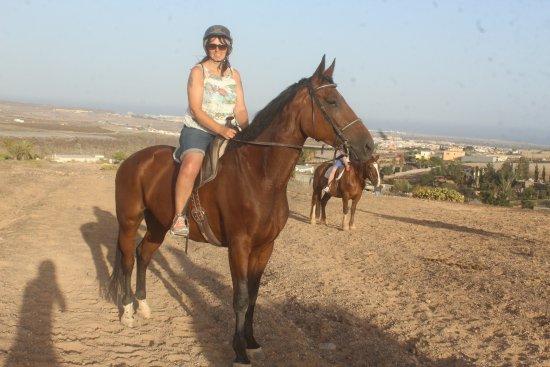 El Salobre Horse Riding: Beautiful Horses