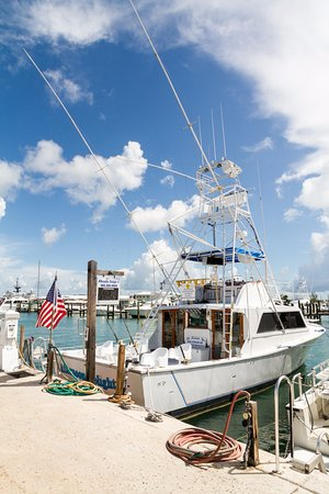Afternoon Delight - Sportfishing Charter Boats