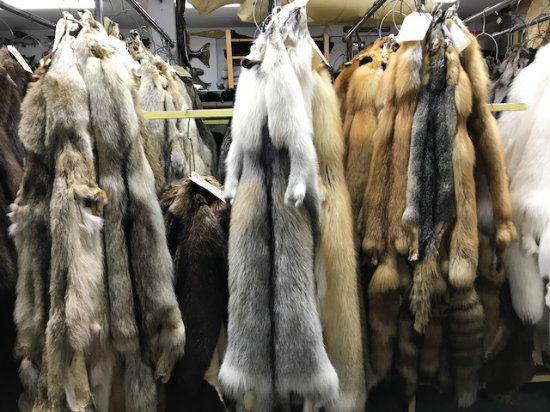 Alaska Fur Exchange