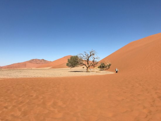 Namib-Naukluft Park, Namibia: photo4.jpg