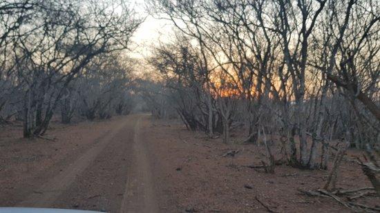 Hidden Gem in Northern Zululand