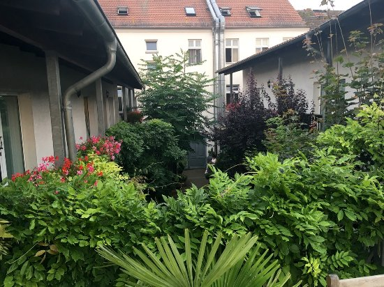 City Hotel Neuruppin Picture