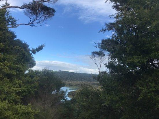 Paihia, Nueva Zelanda: photo1.jpg
