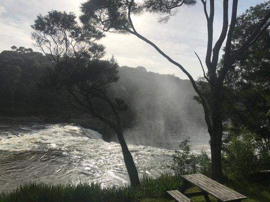 Paihia, Nueva Zelanda: photo5.jpg