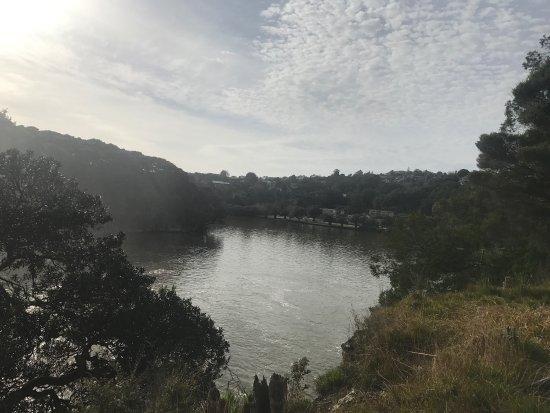 Paihia, Nueva Zelanda: photo6.jpg