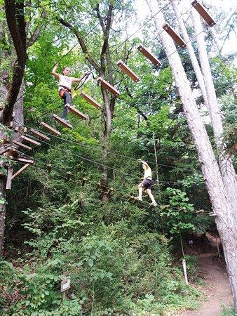 Die, Francia: parcours au milieu de grands arbres de différents niveaux en fonction de l'âge et de l'expérienc