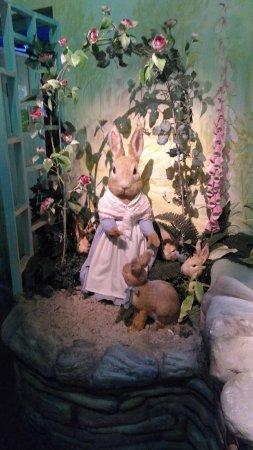 The World of Beatrix Potter: IMG_20170807_115503037_large.jpg