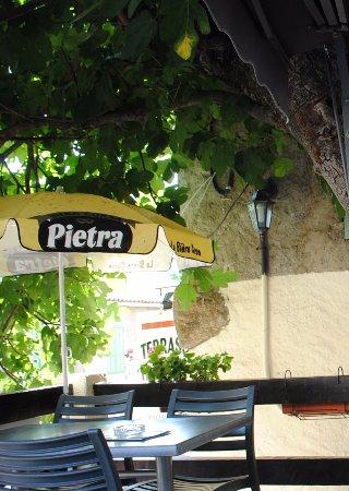 Evisa, France: Terrace under fig tree