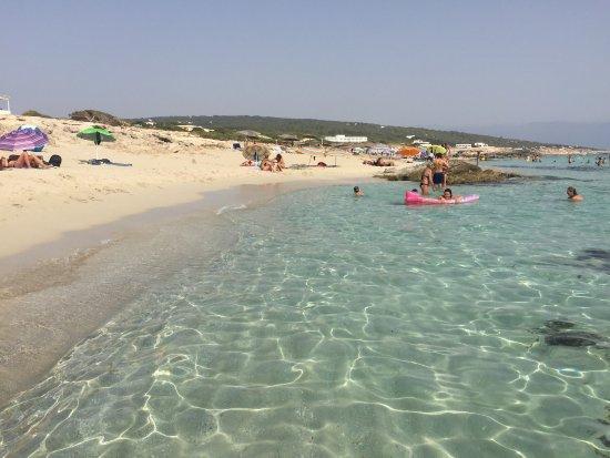 Playa de Migjorn : photo2.jpg