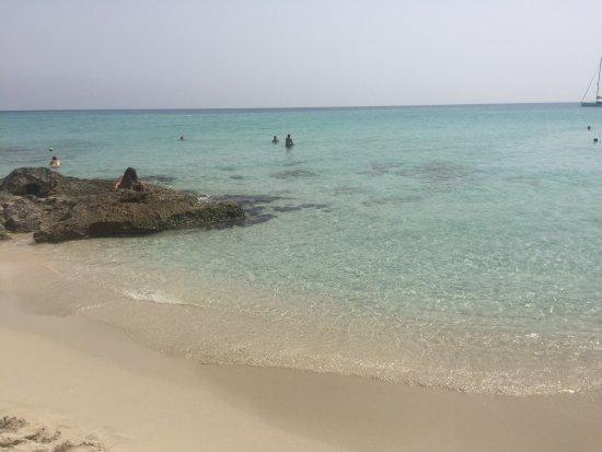 Playa de Migjorn : photo4.jpg