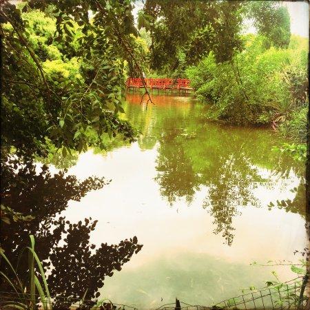 Saint-Cyr-en-Talmondais, Francja: Parc Floral et Tropical de la Court d'Aron
