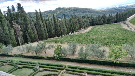 Gaiole in Chianti, Italia: IMG_20170813_135117_large.jpg