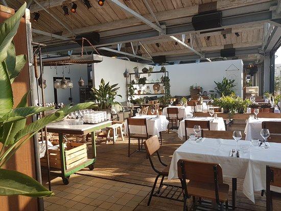 branding beachclub - picture of branding beachclub, noordwijk