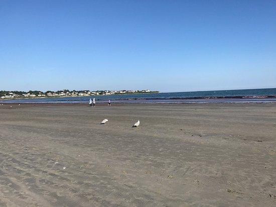 Easton's Beach: photo8.jpg