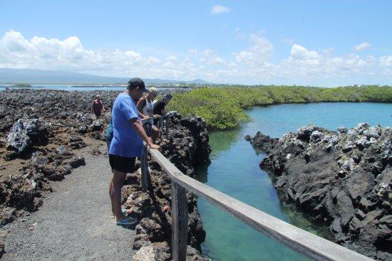 Puerto Baquerizo Moreno, Ecuador: Galapagos Booking Travel - Santa Cruz