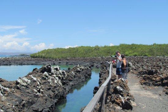 Puerto Baquerizo Moreno, Ecuador: Galapagos Booking Travel - Santa Cruz Tours