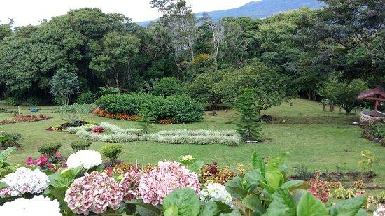Cabanas El Parador: Jardines