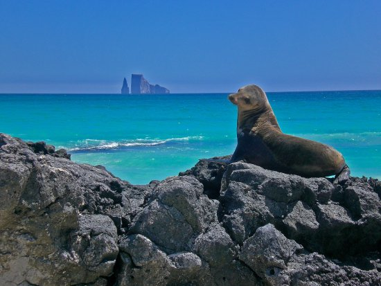 Galapagos Booking Travel