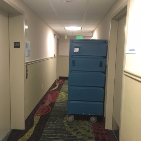 Stuff out in the hallway and left overnight