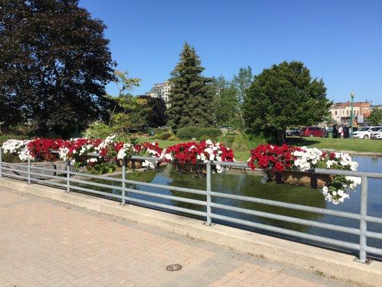 باري, كندا: photo1.jpg