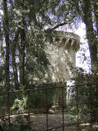 Sarteano, Italy: Una delle torri...