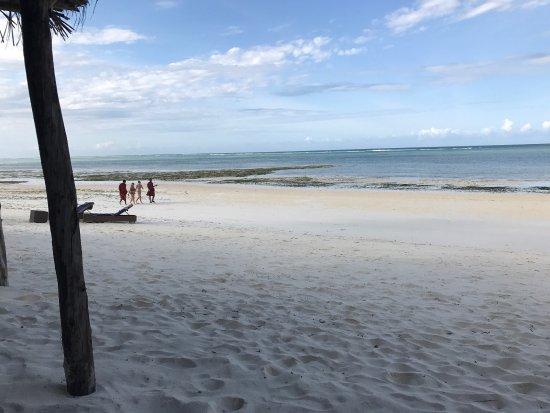 Melia Zanzibar : photo8.jpg