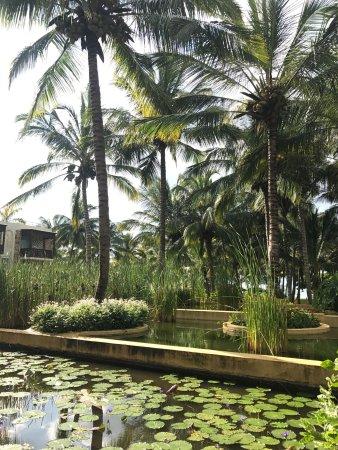 Melia Zanzibar : photo9.jpg
