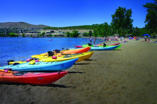 Vernon, Canada: Colourful view of the kayaks available to rent off of Kalamalka Beach!