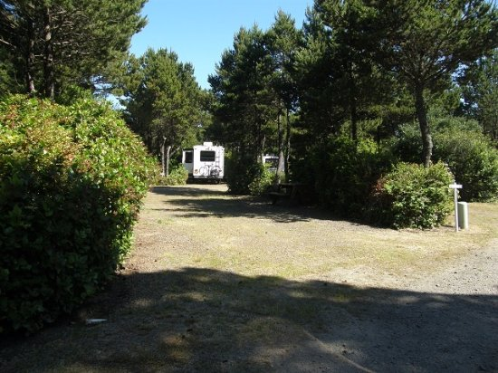 Heceta Beach RV Park: Separation between sites