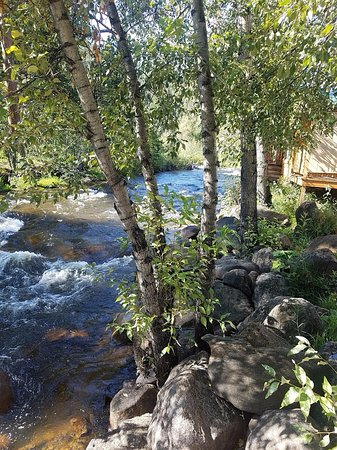 Paradise on the River-bild