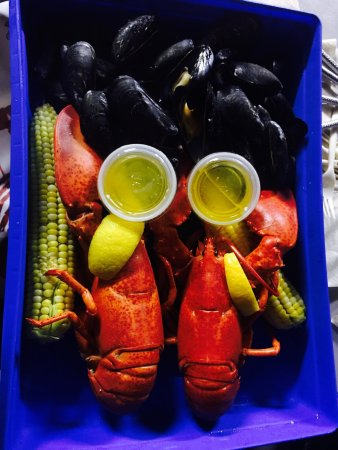 C-Ray Lobster 사진