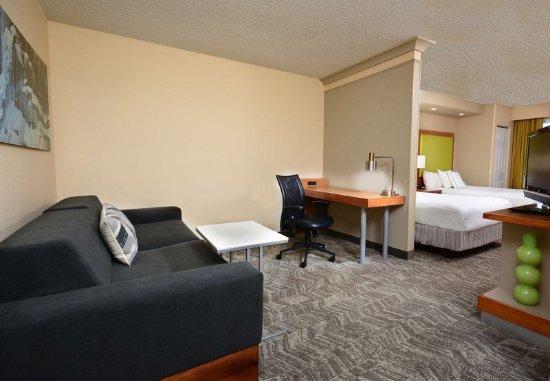 Lynchburg, VA: Double/Double Studio Suite - Living Area