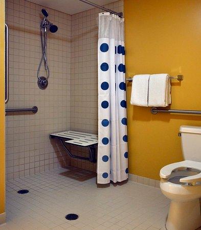 East Lansing, ميتشجان: Accessible Studio Suite Bathroom