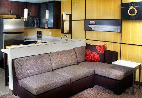 Largo, Μέριλαντ: Studio Suite Living Area & Kitchen
