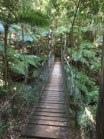 Canungra, Australia: photo3.jpg