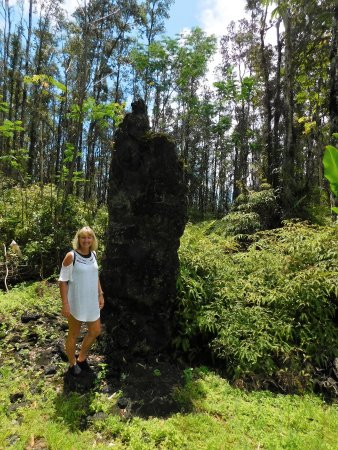 Pahoa, Hawaje: lava tree with forst behind