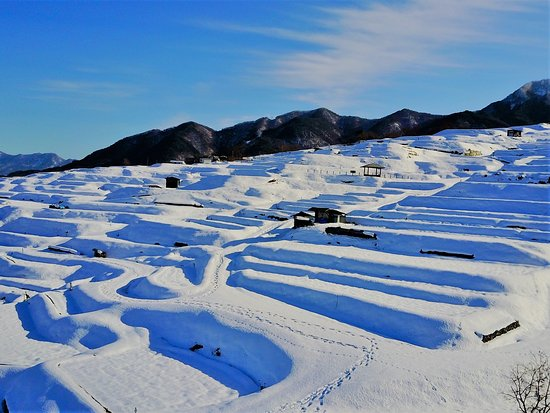 Obasute tanada (Terraced rice fields) : 冬(12月~3月) Winter (December to March)