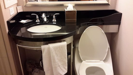 New York Hilton Midtown: No room for toiletry bag on bathroom counter. Was worried my cosmetics would fall in the toilet.