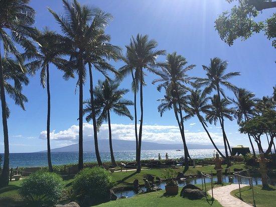 Hyatt Regency Maui Resort and Spa: photo1.jpg
