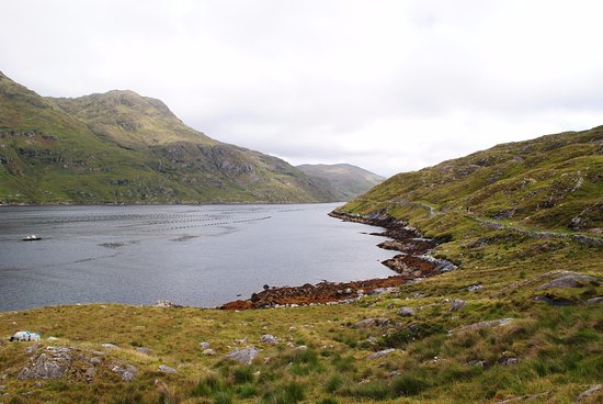 Leenane, Irlanda: What a view!