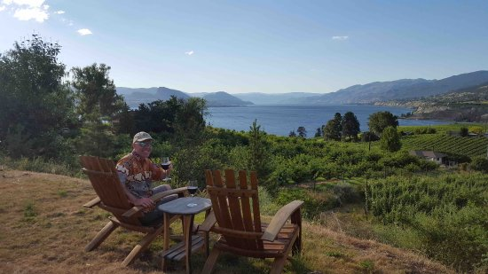 E'Laysa Guesthouse and Vineyard Retreat: View