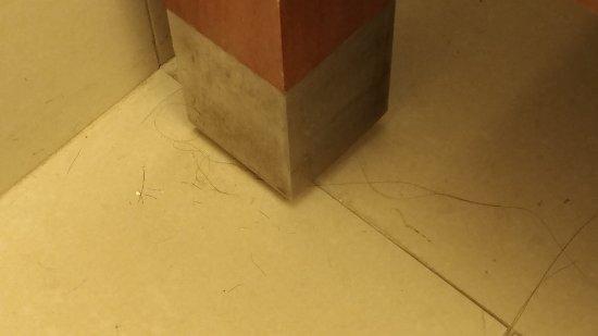 Hyatt Regency Crystal City at Reagan National Airport: Hairs on the bathroom floor--was room cleaned?