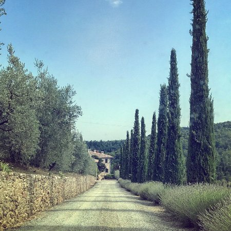 Vagliagli, Italy: Tuscany as you imagine