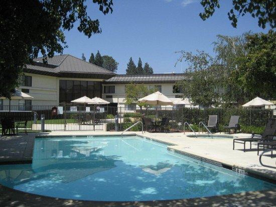 Уолнат-Крик, Калифорния: Pool