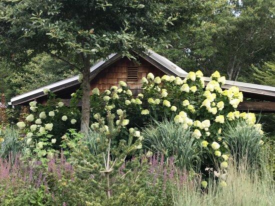 The North Carolina Arboretum: photo4.jpg
