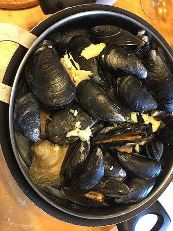Bernard, ME: Mussels