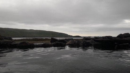 Patreksfjorour, Islandia: 20170806_094601_large.jpg