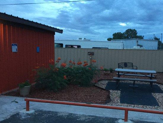 Fort Stockton, TX: Outdoor area/ Pet area