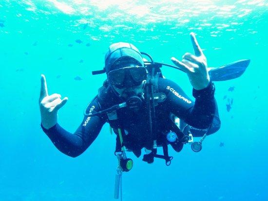 Big Fish Diving: Staff :)