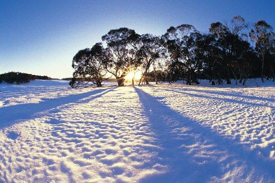Williamstown, Australie : getlstd_property_photo